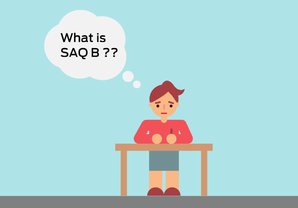 self-assessment-questionnaire-b-saq-b