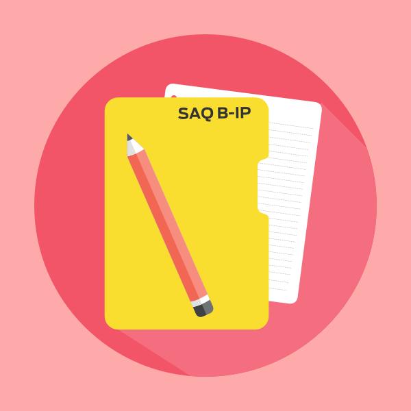 pci-dss-self-assessment-questionnaire-b-ip